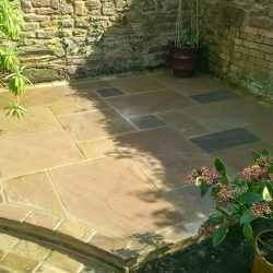shaded corner of a garden