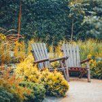 garden bench amid autumnual planting scheme